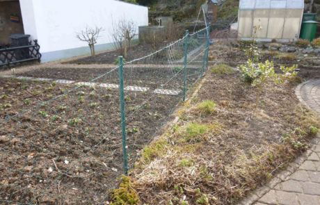 Garten Vor Sanierung