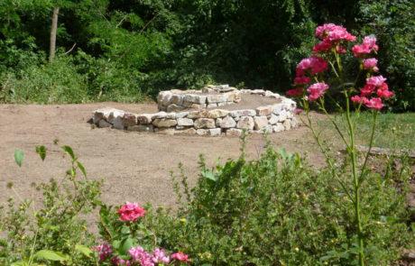 Kraeuterschnecke Trockenmauer