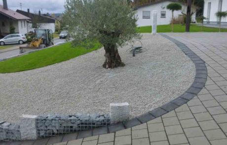 Mediterran Gestaltete Auffahrt Mit Olivenbaum