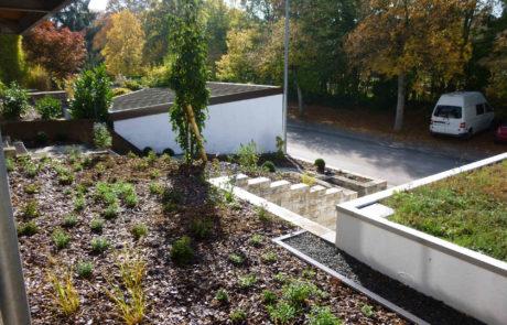 Neuer Vorgarten Nach Bepflanzung
