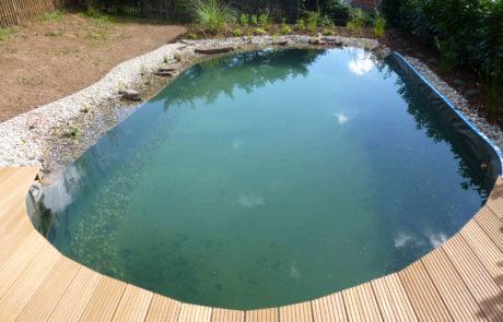 Schwimmteich Pool Nachher 2