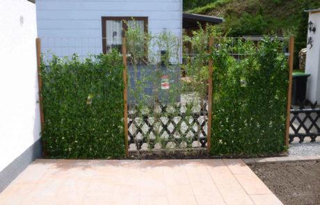 Terrasse Mit Sichtschutzhecke