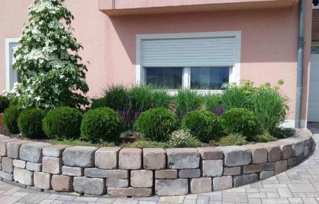 Vorgartenbepflanzung Bauseits 3